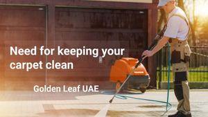Carpet Cleaning Abu Dhabi - Golden Leaf Pest Control and Cleaning