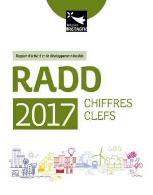 Synthese Radd 2018