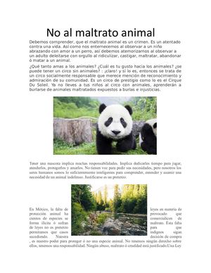 No Al Maltrato Animal Debemos Comprender