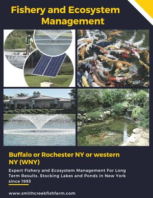 Fishery And Ecosystem Management New York