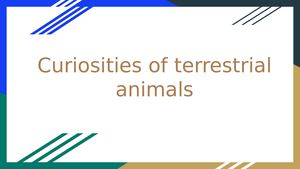 Curiosities Of Terrestrial Animals