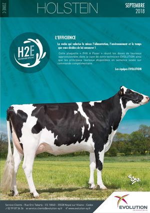 PAP Holstein Zone C Septembre 2018