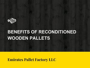 Reconditioned Wooden Pallets Suppliers In UAE