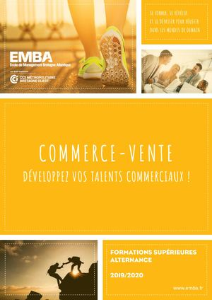 Emba : formations Commerce Vente 2019/2020 Sans Bachelor