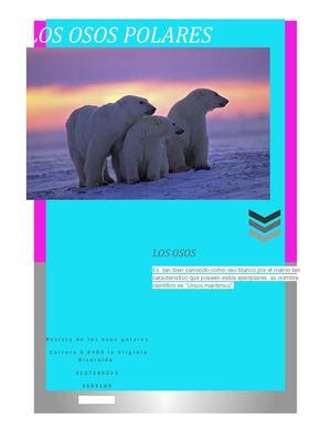 Calaméo Revista Los Osos Polares
