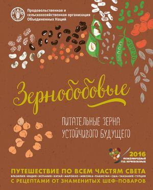 Пророщенные зёрна и бобы самая живая и полезная пища   zenslim. Ru.