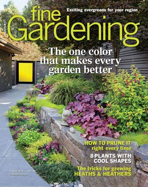 Fine Gardening Issue 185 - Preview
