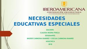 Diapositivas Nesecidades Educativas Especiales