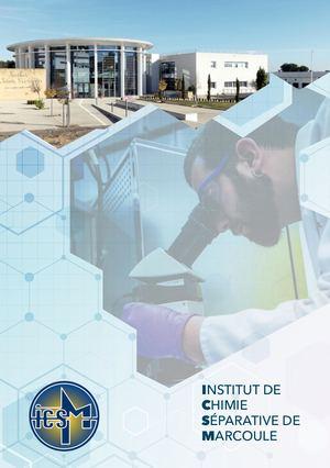 Calaméo Icsm Scientific Report 2015 2018