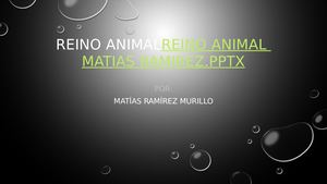 Reino Animal Matias Ramirez 2