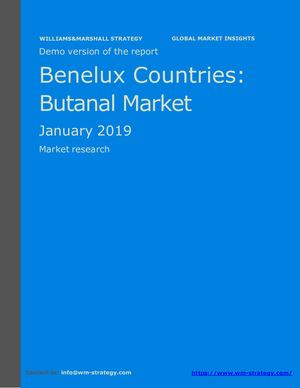 WMStrategy Demo Benelux Countries Butanal Market January 2019