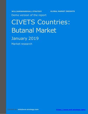 WMStrategy Demo CIVETS Countries Butanal Market January 2019