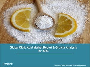 Citric Acid Market Global Industry Overview, Sales Revenue, Demand and Forecast by 2024