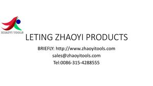 Leting Zhaoyi Products