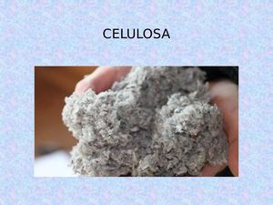 Celulosa Power