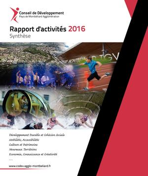 Synthese Rapport Activites 2016