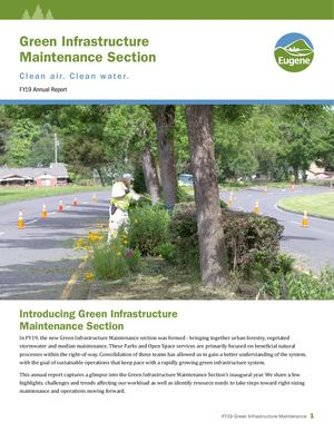 Green Infrastructure Maintenance - FY19 Annual Report