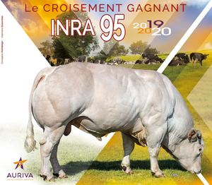 Catalogue Inra95 2019