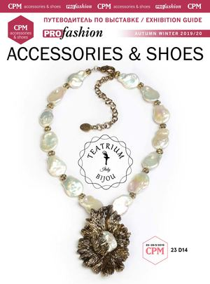 Accessories & Shoes (2019)
