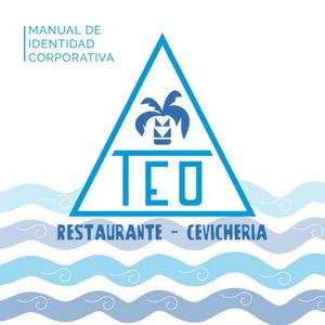 Manual De Identidad Teo