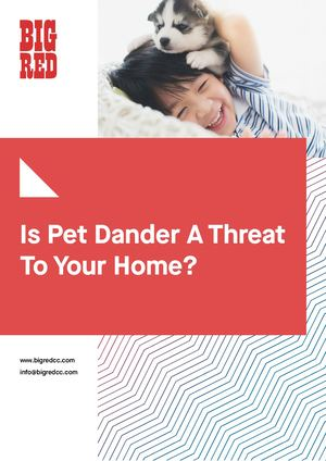 Is Pet Dander A Threat To Your Home?