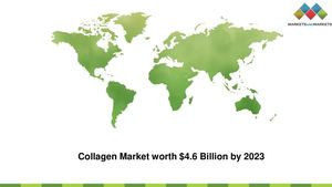 Collagen Market Size Estimation, Growth Rate, and Future Trends, 2022