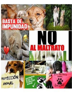 Di No Al Maltrato Animal