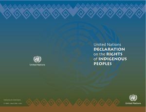 Macn R000000202 United Nations Declaration On The Rights Of Indigenous People
