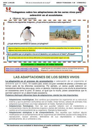 Calaméo Ficha 20 Adaptaciones De Los Seres Vivos Al Ecosistema