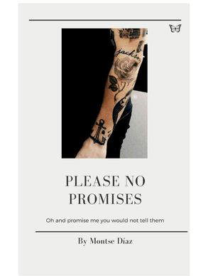 Please no promises - Montse
