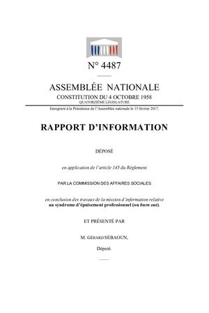 Rapport Parlementaire 2017 n 4487