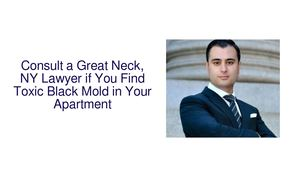Consult a Great Neck, NY Lawyer if You Find Toxic Black Mold in Your Apartment